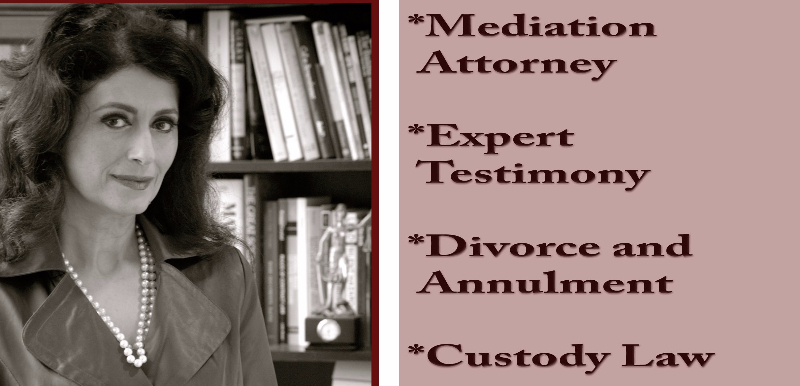 How to Choose a Mediator Image