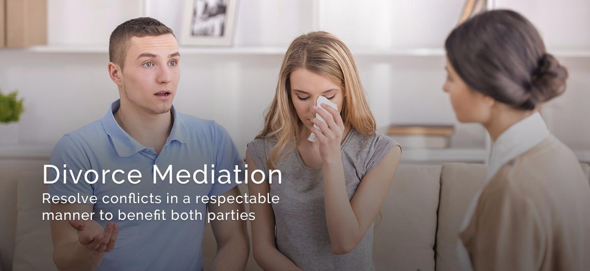 Divorce mediation business plan bundle